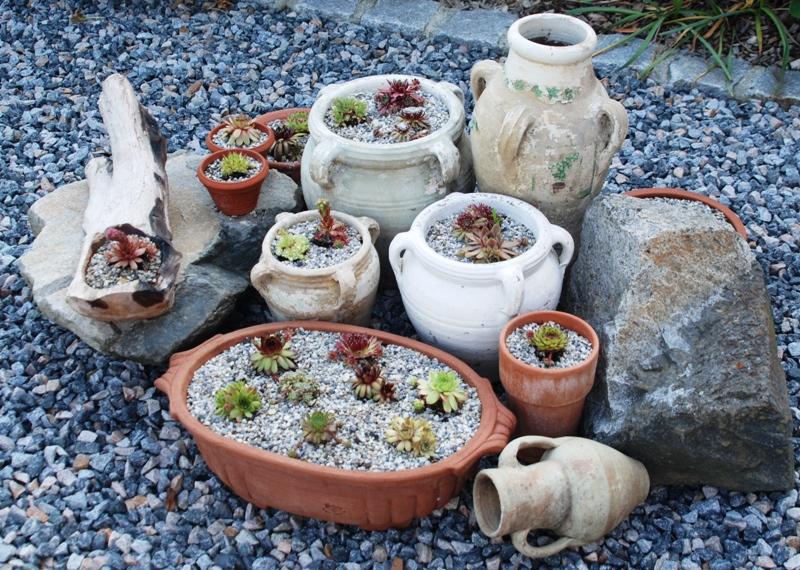 familie kaltwasser, Garten seite